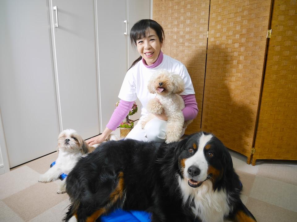 犬の整体とマッサージ専門店 Ola Ola